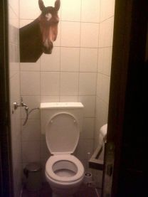 Entirely unexplainable picture of a horse's head on the bathroom wall.